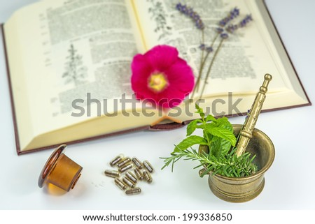 Naturopathy with herbs - stock photo