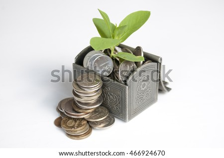 Near the chest with a plant stand a pile of coins