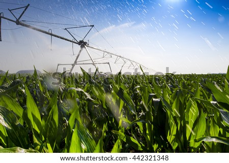 Nebraska Corn Field Irrigation - stock photo