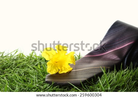 Necktie put beside with yellow flower in the scene appear the green grass as a background represent the accessory of formal business uniform. - stock photo