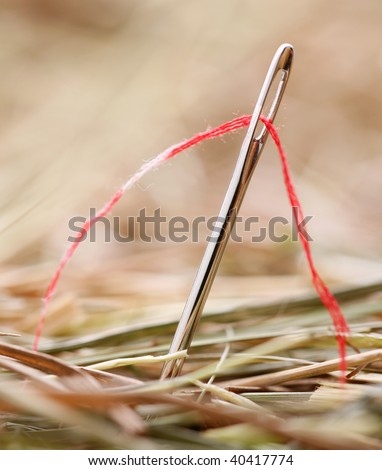 Needle with a red thread in a haystack - stock photo