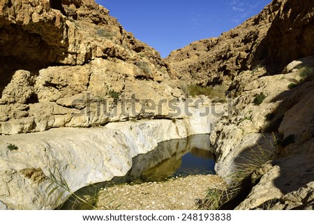 Negev desert landscape after flood in winter season, Israel. - stock photo