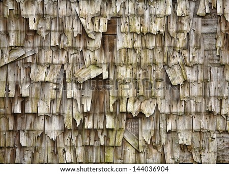 neglected and weather shake siding on old shack - stock photo