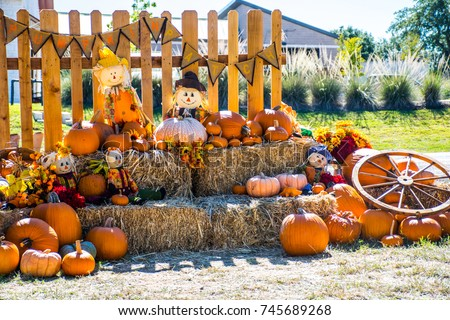 Neighborhood Texas fall autumn rustic hill country Halloween landscape scene with pumpkin patch and scarecrow and hay bales with wagon wheel