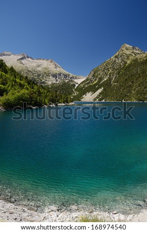Neouvielle nature reserve has mountainous lakes and artificial reservoirs. The slopes are covered with dwarf mountain pines. - stock photo