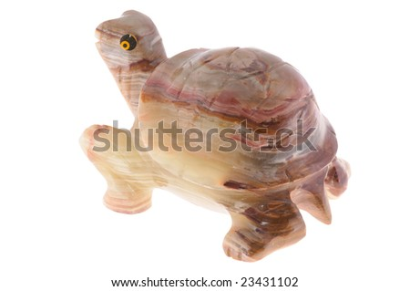 nephrite tortoise, isolated on white background .