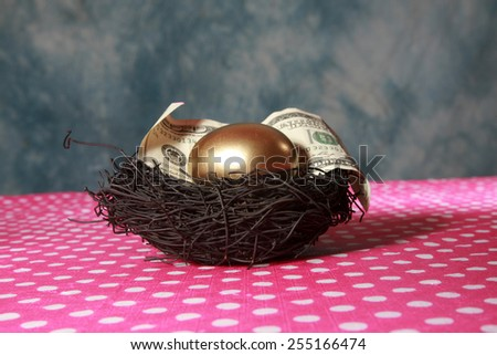 Nest Egg. A Solid 24K Golden Egg lays in a Black Bird Nest with a Genuine 100 Dollar bill. Represents Retirement savings, Saving for a Rainy Day, Savings account, 401K, Banking, Finance business - stock photo