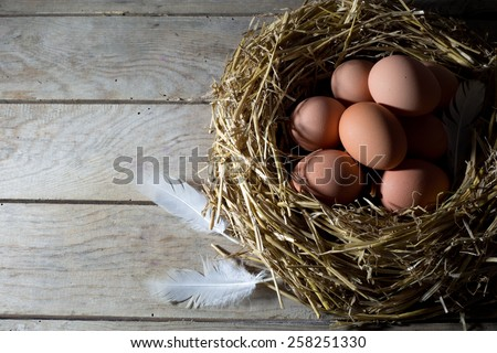 Nest with Brown Chicken Eggs and White Feather on an Old Rustic Wooden Table, View From the Top  - stock photo