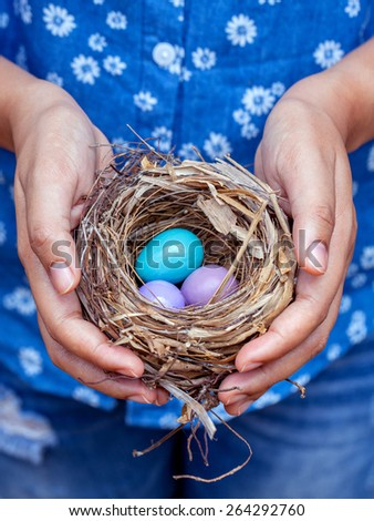 Nest with Colorful eggs in woman's hands. - stock photo