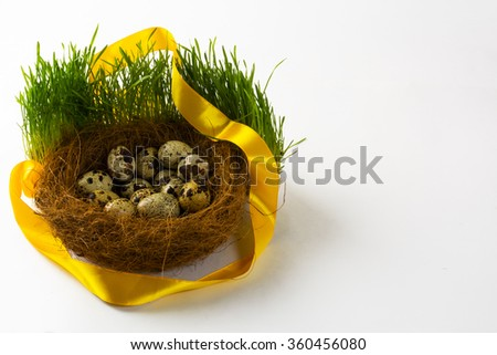 Nest with eggs of the wild bird in fresh green grass with a yellow satin ribbon on white background. Easter background. Easter symbol. Top view with copy space. Horizontal - stock photo