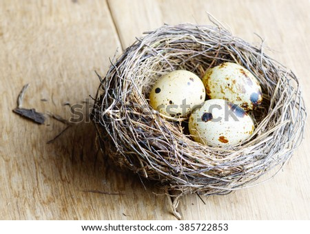 Nest with quail eggs on the wooden background