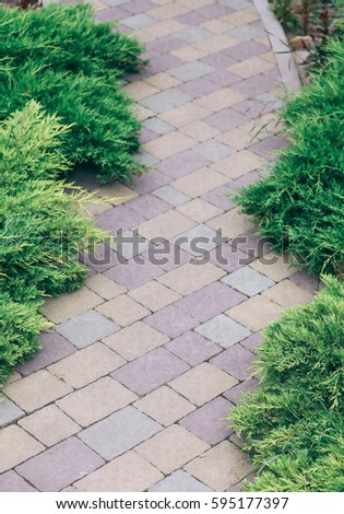 Grass concrete paver stock images royalty free images for Green pavers
