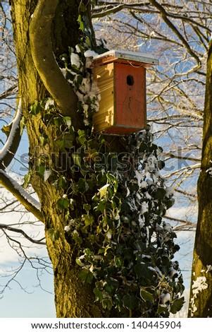 Nesting box for wild birds - stock photo