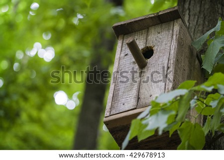 Nesting box or birfhouse on the wood in the forest