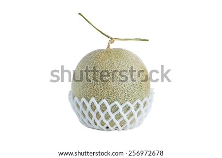 Net foam  wrap Melon isolated on white background - stock photo