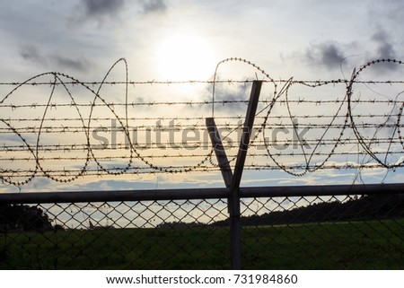 Net Wall Razor Barbed Wire Mesh Stock Photo (Edit Now)- Shutterstock