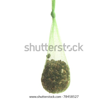Net with seeds for feeding birds  in winter - stock photo