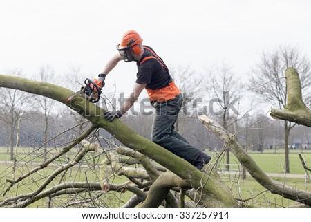 Netherlands, Caucasian Male. Lumberjack - stock photo