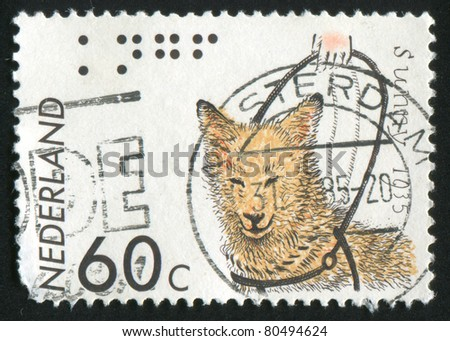 NETHERLANDS - CIRCA 1985: stamp printed by Netherlands, shows Sunny, first guide dog, circa 1985