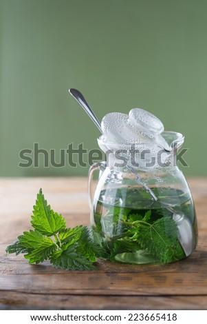 Nettle and freshly made nettle tea - stock photo