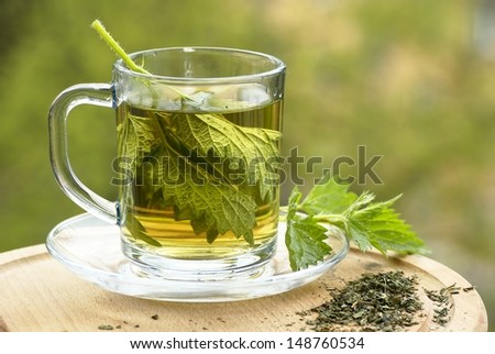 Nettle tea in glass, fresh and dry nettle. - stock photo