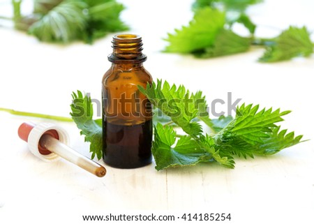 nettle tincture in a small bottle and fresh leaves on white wood, medicinal herb for overweight, diabetics and kidney weakness, selected focus, narrow depth of field - stock photo