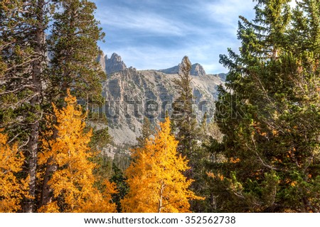 Nevada-Great Basin National Park-This image was captured along Wheeler Peak Trail at the height of Autumn.      - stock photo