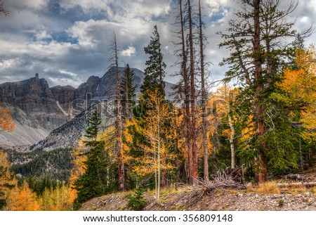 Nevada-Great Basin National Park-Wheeler Peak Trail. This image was created on a beautiful Autumn day in this high elevation National Park.