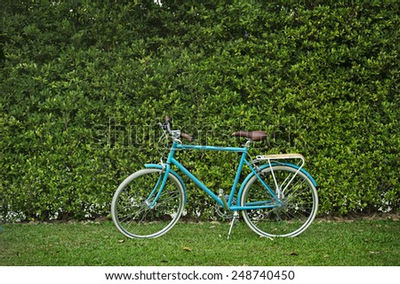 new bicycle  in the garden - stock photo