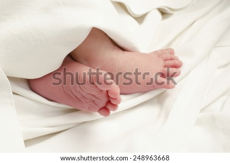 New born baby feet. Close up on little baby feet, ten days baby sleeping under the sheet. - stock photo