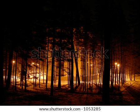New building in forest by night - stock photo