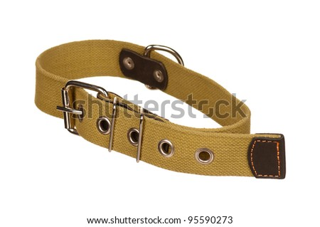 New dog collar isolated on the white background