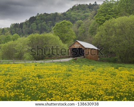 New England covered bridge in the state of Vermont surrounded by dandelions - stock photo