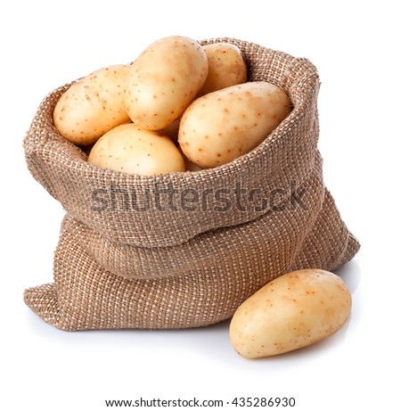 new fresh raw potatoes in bag isolated on white background. Ripe potatoes in burlap sack isolated on white background - stock photo