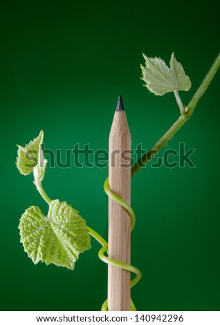 New growth sprouting from pencil