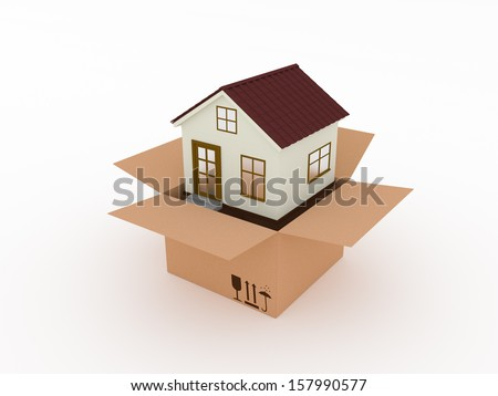 New house from a box