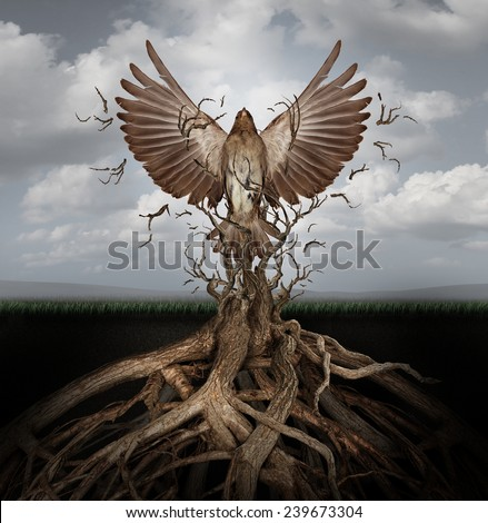 New life breaking free as a concept for freedom and power as the rise of the phoenix to be reborn and overcome challenges rising from entangled tree roots as a success symbol of hope. - stock photo
