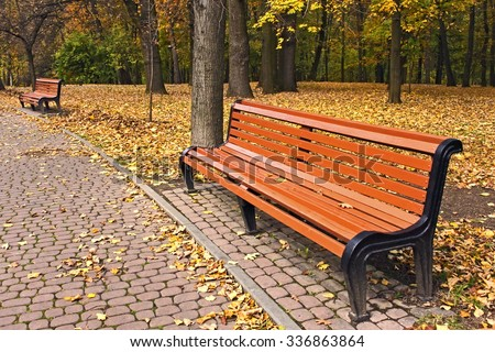 New light brawn bench in park near the alley in falling season in calm weather - stock photo