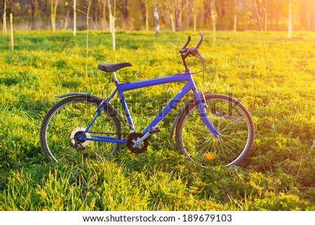 New mountain bicycle in park at sunset