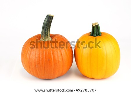 new picked pumpkin isolated on white background