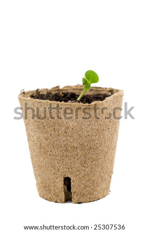 New plant growth coming out of a environmental container, isolated against a white background
