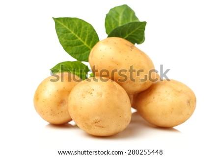 New potato isolated on white background close up - stock photo