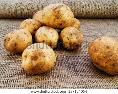 New potatoes on burlap sack background. Natural canvas texture. Organic food. Backdrop for design. - stock photo