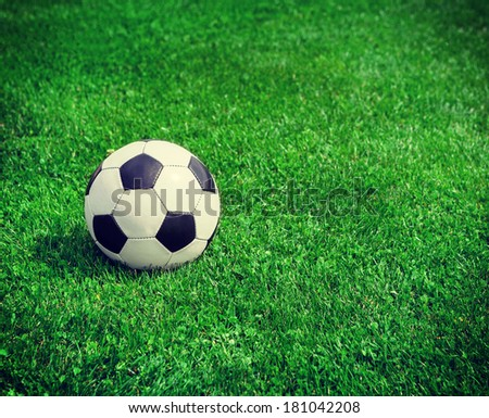 New soccer ball on green grass. Copyspace