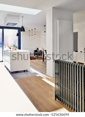 New Vertical radiator and old horizontal one in a spacious apartment with french windows and lush garden