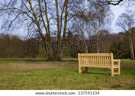 New Wooden Park Bench on Green Grass Meadow with Trees in late Winter - stock photo
