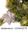 New year card with beautiful star and fur tree - stock photo