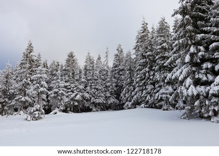 New year in Ukrainian Carpathians mountains