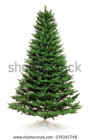 New year tree without toys over white background - stock photo