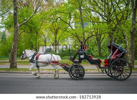 NEW YORK - APRIL 18 : A horse and buggy carriage with coachman in Central Park on April 18 2012 in New York City. The carriage rides are in danger of being banned for animal safety issues. - stock photo